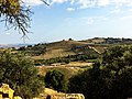 Valley of the Temples, Agrigento, Sicily.jpg