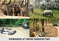 Valmiki National Park.jpg