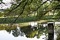 Vecauces pils parks 8.jpg