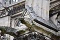 Vestigio de gárgola en Notre Dame de París.jpg