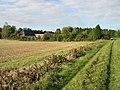 View along Footpath towards Venson Farm - geograph.org.uk - 589913.jpg