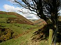 View down valley - geograph.org.uk - 600950.jpg