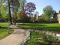 View from the bench (OpenBenches 5802-2).jpg
