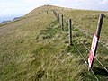 View west towards the summit of Bindon Hill - geograph.org.uk - 222038.jpg