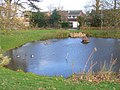 Village Pond, Bisley - geograph.org.uk - 1598042.jpg
