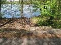Vyžlovský rybník (019).jpg