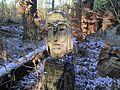 Wächter des Waldes - panoramio.jpg