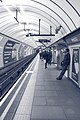 Waiting at Pimlico (5164720100).jpg