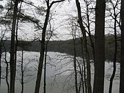 Walden Pond in November, Concord MA