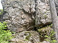 WaldmuenchenPucherEinsiedlerfels 03.JPG