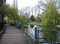 Walkway by the Cam - geograph.org.uk - 784001.jpg