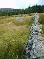 Walled enclosure west of Straverron Hill - geograph.org.uk - 545233.jpg