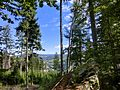 Warmensteinach vom Neuwelter Berg - panoramio.jpg