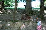 Warstein-Wildpark 2007-04-30 17-09-11 (1175669886).jpg