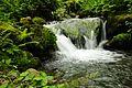 Waterfall in Mtirala National Park.JPG