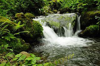 protected area in Adjara region, Georgia