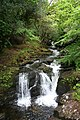 Waterfall on the Owengarriff River - geograph.org.uk - 450478.jpg