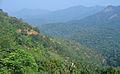 Western Ghats Vegetation - View en route Kottiyoor to Mananthavady6.jpg