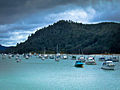 Whangamata Harbour grey morning.jpg