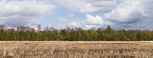 Wijnjeterper Schar, Natura 2000-gebied provincie Friesland 002.jpg