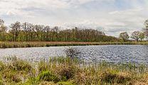 Wijnjeterper Schar, Natura 2000-gebied provincie Friesland 014.jpg
