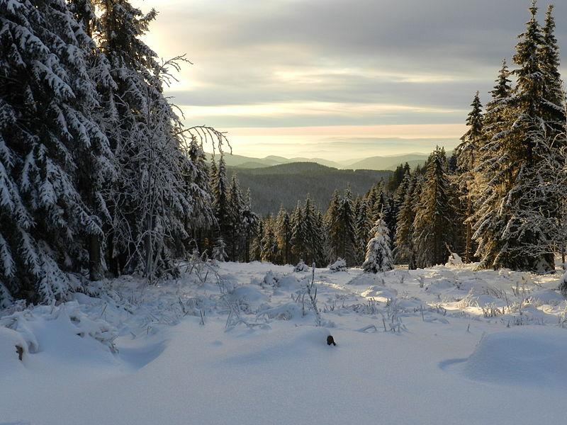 Зима в горах Гарц, Германия. Свободное изображение Википедии. Автор фотоизображения Marcel M?ring.
