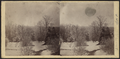 Winter scene, Westchester County, N.Y, from Robert N. Dennis collection of stereoscopic views.png