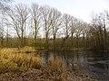Wolbecker Tiergarten (4).JPG