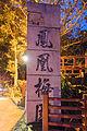 Wongwt 鳳凰梅園 (16573690769).jpg