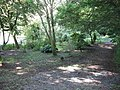 Woodland Footpath Near Pill Priory - geograph.org.uk - 1416885.jpg