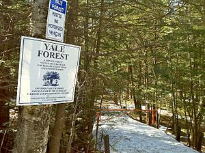 Yale-Myers Forest - Yale-Myers Forest Signs and northern entrance to the Nipmuck Trail on Bigelow Hollow Road AKA CT Route 197 near Bigelow Hollow State Park.
