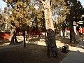 Yan Miao - northern courtyard - P1050460.JPG