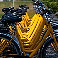 Yellow rental bikes (3679961210).jpg
