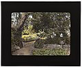 """""""Arcady,"""" George Owen Knapp house, Sycamore Canyon Road, Montecito, California. Wall relief along pathway LCCN2007685013.jpg"""