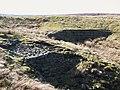 (Part of) Corbitmere Dam (2) - geograph.org.uk - 1268397.jpg