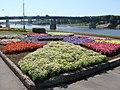 Вид на Мост Александра Невского (Новгород Великий).jpg