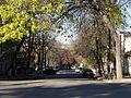 Вид на улицу Пархоменко - panoramio.jpg