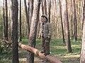 В ліс по гриби.jpg