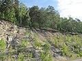 Дорога на поселок Караидель - panoramio.jpg