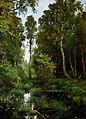 Заросший пруд у опушки леса. Сиверская (Шишкин).jpg