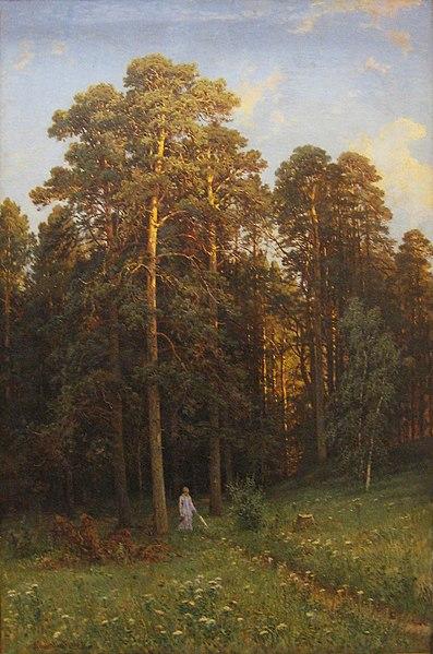 File:Иван Шишкин На опушке соснового леса 1882.jpg