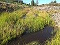 Кюляярви (река).jpg