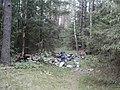 Лес в Уручье - panoramio (2).jpg