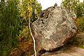 Монрепо. Падающий камень.jpg