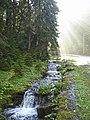 Національний природний парк «Синевир», 1.jpg