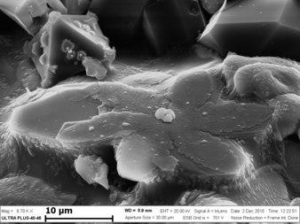 Оксиды на поверхности образца, полученного при СВС Ni-Al-B. 2.tif