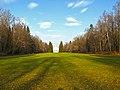Ораниенбаум, луг у Катальной горки02.jpg