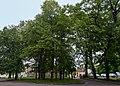 Парк XIX століття DSC 0097.jpg