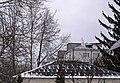 Платани-кучерики на території дитсадка в Чорткові P1190308.jpg