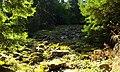 """Природата на """"Каньонът на водопадите"""".jpg"""